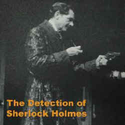 Illustration for The Detection of Sherlock Holmes